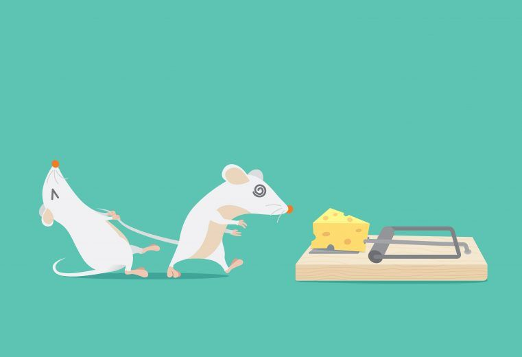 Cartoon picture of mouse tries to stop friend to trapped because cheese.