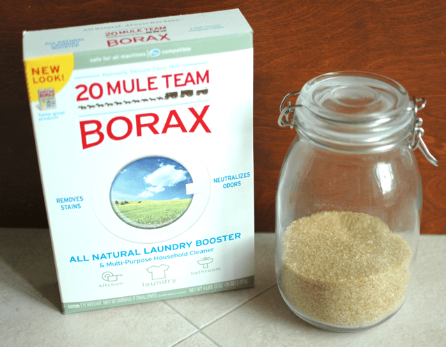 Borax and sugar to kill ants