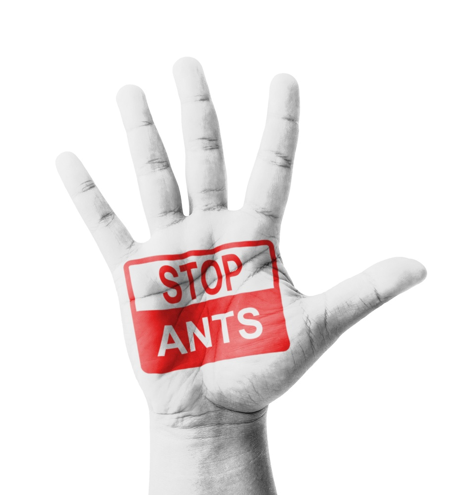 Open hand raised, with Stop Ants sign painted.