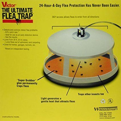Victor M230 Ultimate Flea Trap