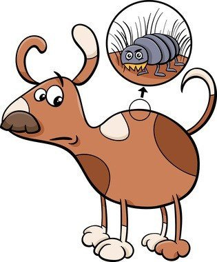 Cartoon illustration of funny dog with flea in his fur.