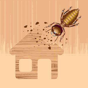 Cartoon picture of a big termite is damaging house.