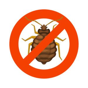 Home bedbug red sign on white background.