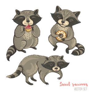 A set of cute characters cartoon raccoons with cakes and cookies.