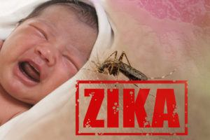 Image of crying baby bitten by Aedes Aegypti mosquito as Zika Virus carrier.