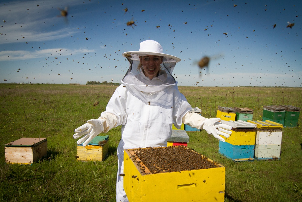 Horizontal photo of a beekeeper in white protection suit standing behind a beehive with arms wide open.