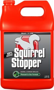 Messina Squirrel Stopper