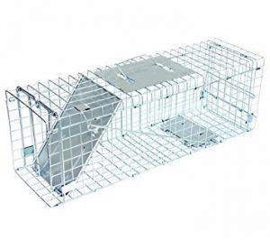 Single-animal-live-cage-trap
