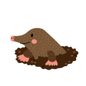 Mole Digging Out of the dirt animal cartoon