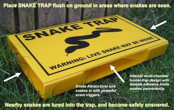 7 Affordable And Easy To Use Snake Traps That Work Pestwiki