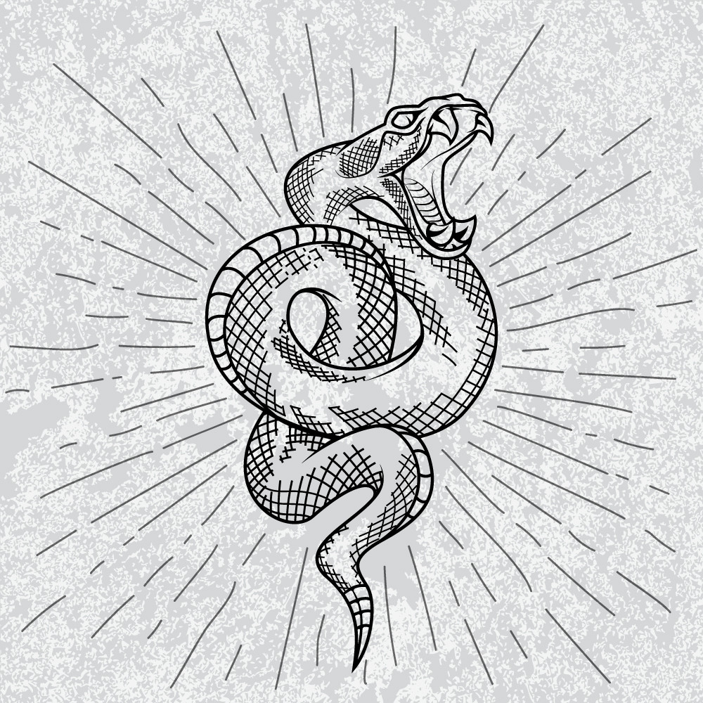 Symbol of Rattlesnake in white background