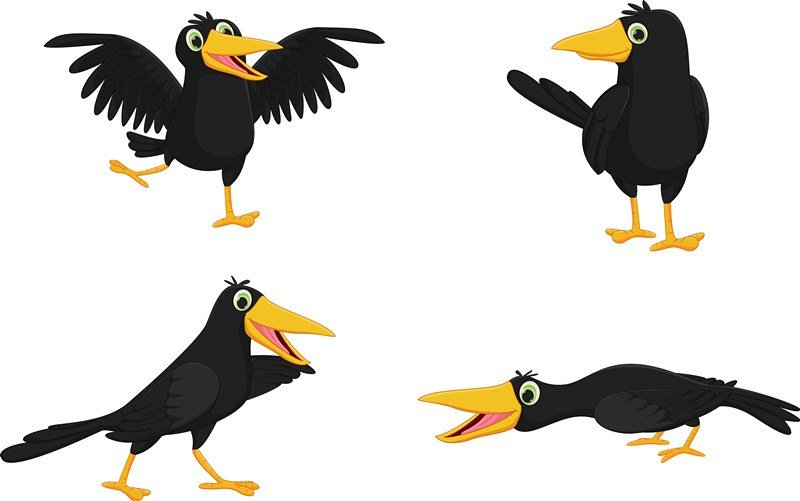 Set of cute cartoon crow