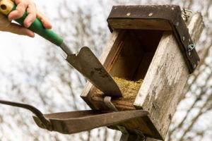 Man try to remove the bird nest with a shovel