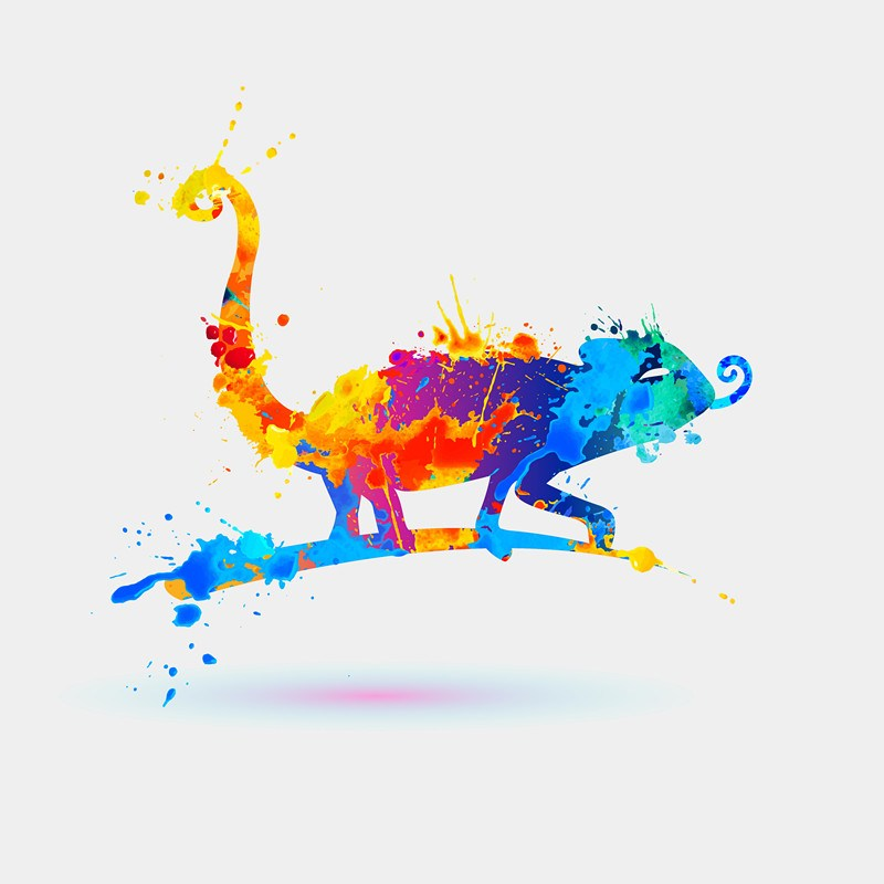 Splash paint Chameleon