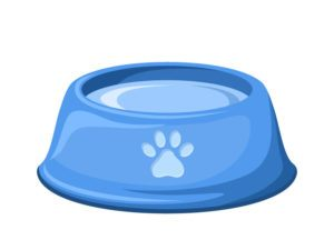 Blue dog bowl with water isolated on a white background.