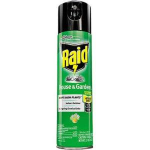 A bottle of Raid House and Garden Bug Killer on the white.