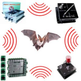 Different ultrasonic bat repellents around a bat.