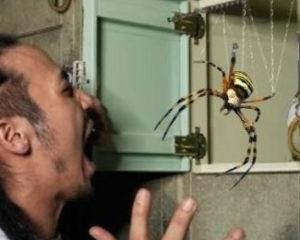 A man is scared when seeing a spider.