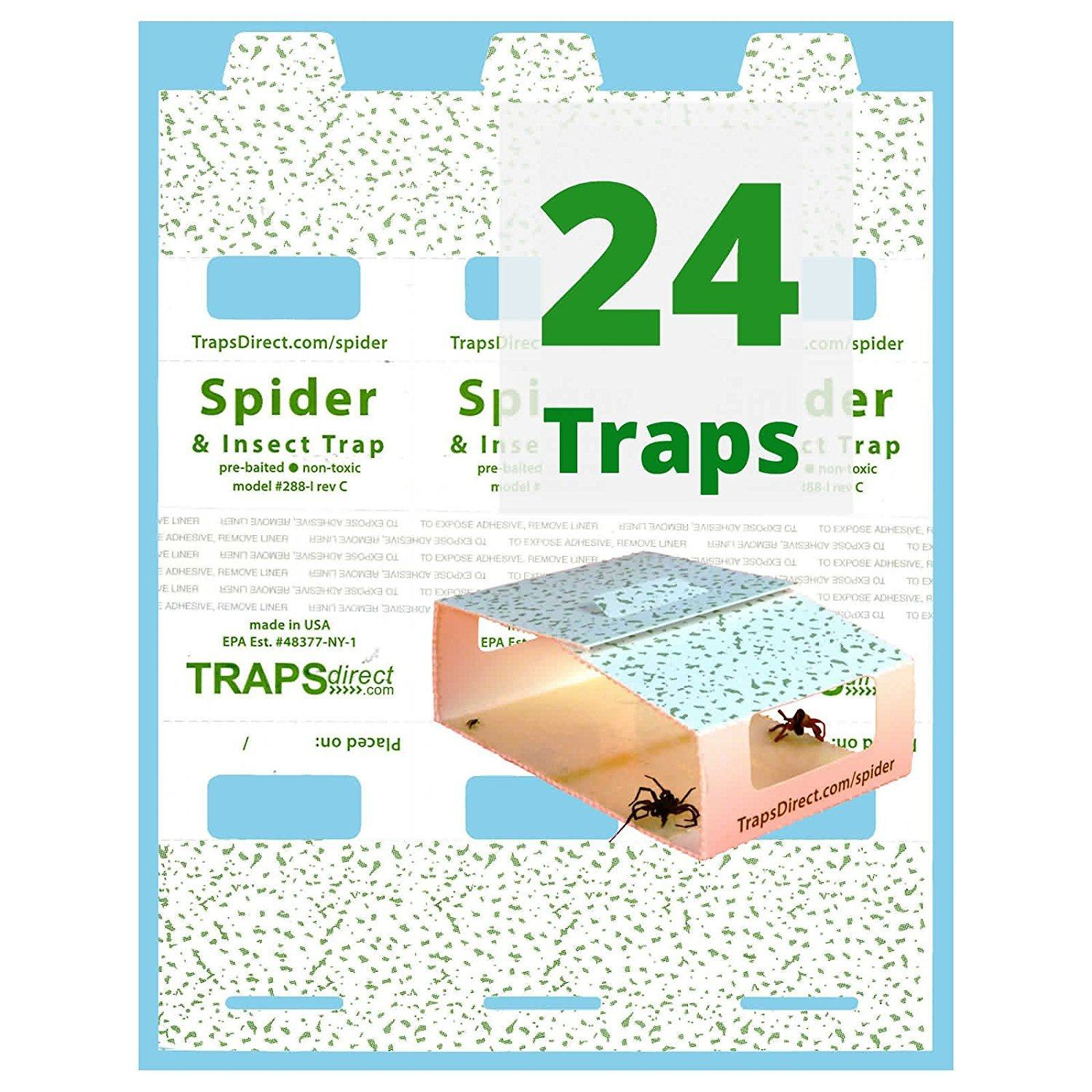 outstanding Spider & Insect Trap