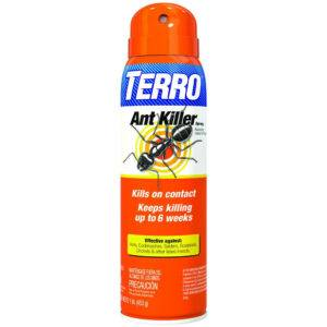 TERRO® Ant Killer Spray isolated on white background.