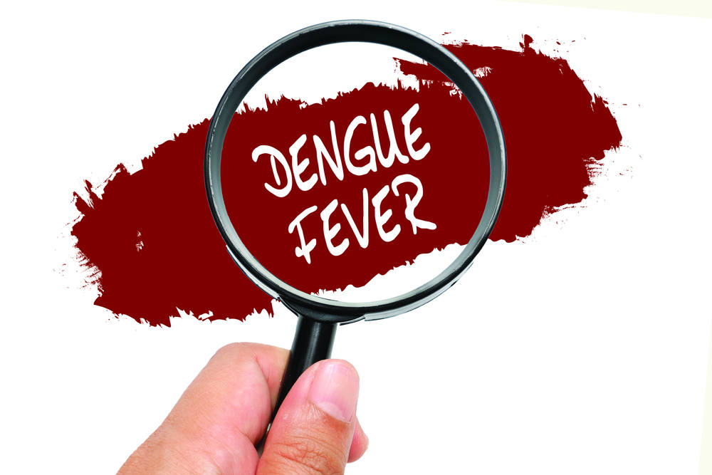 Dengue Fever, health conceptual.