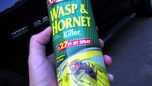 Wasp spray in human's hand.