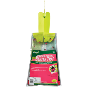 Rescue-disposable Japanese beetle trap on the white.