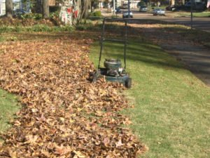 The machine is working for removing debris and excessive mulch.