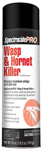 SpectracidePRO Wasp & Hornet Killer
