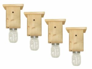 Best Bee Brothers Black bee Trap