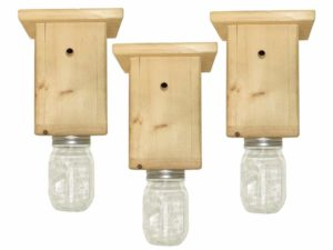 Best Bee Brothers Bee Box Trap