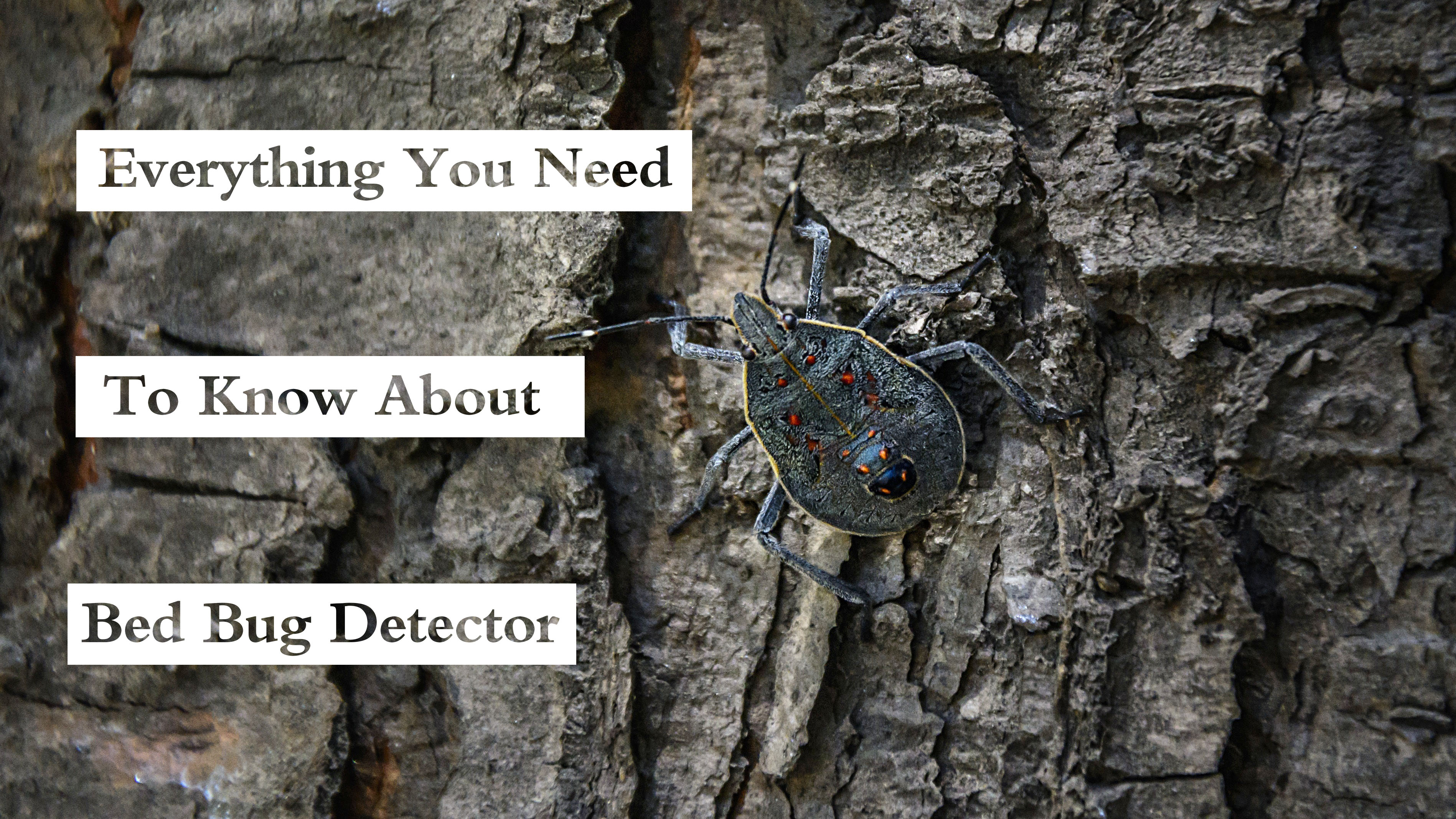 Bed Bug Detector