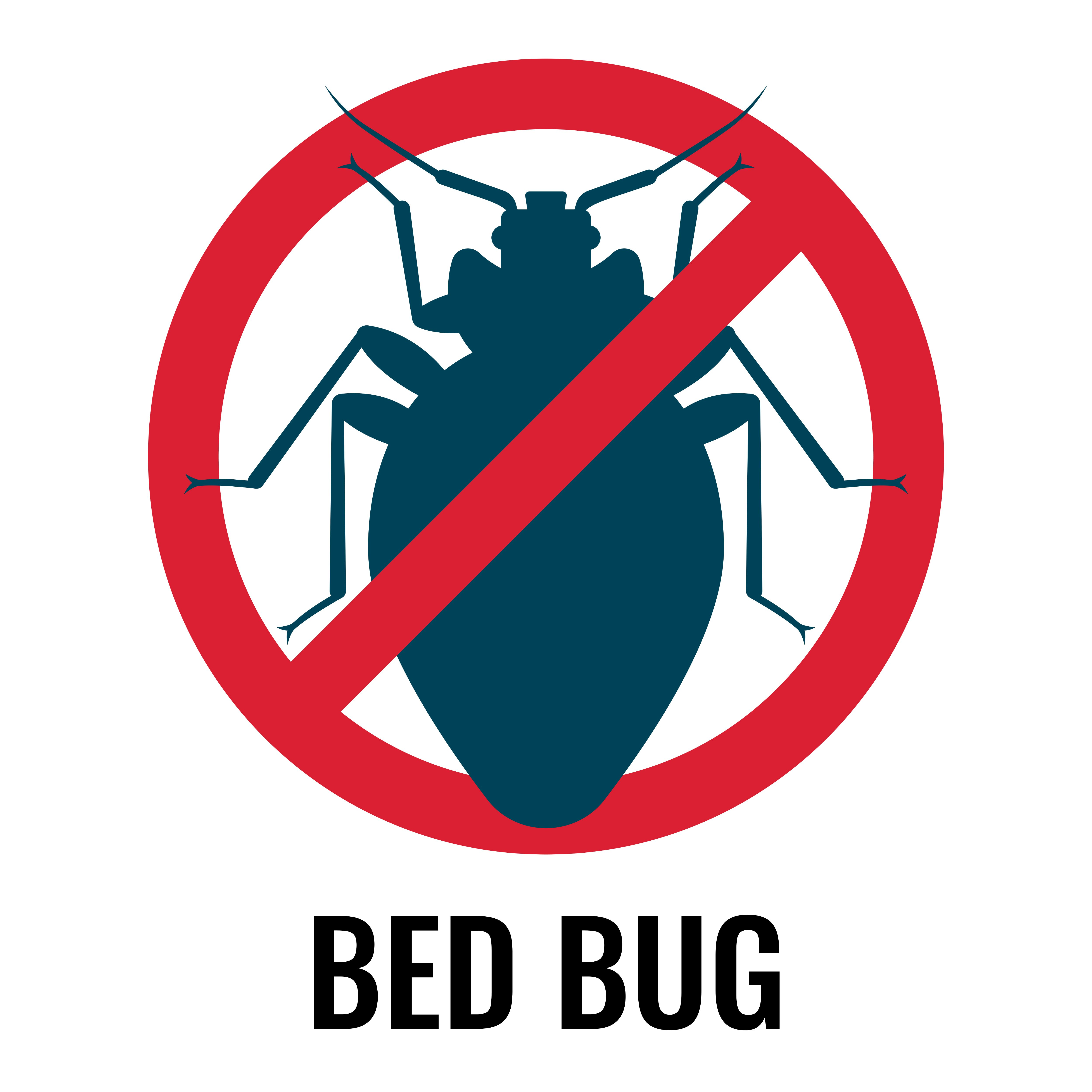 kill bed bug