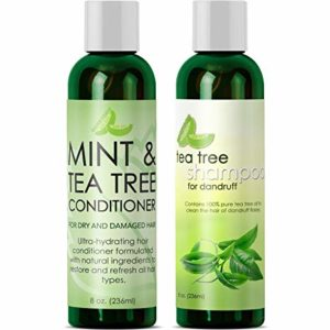 Maple Holistics Tea Tree Oil Shampoo