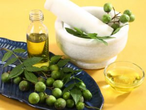 Neem Oil Hack