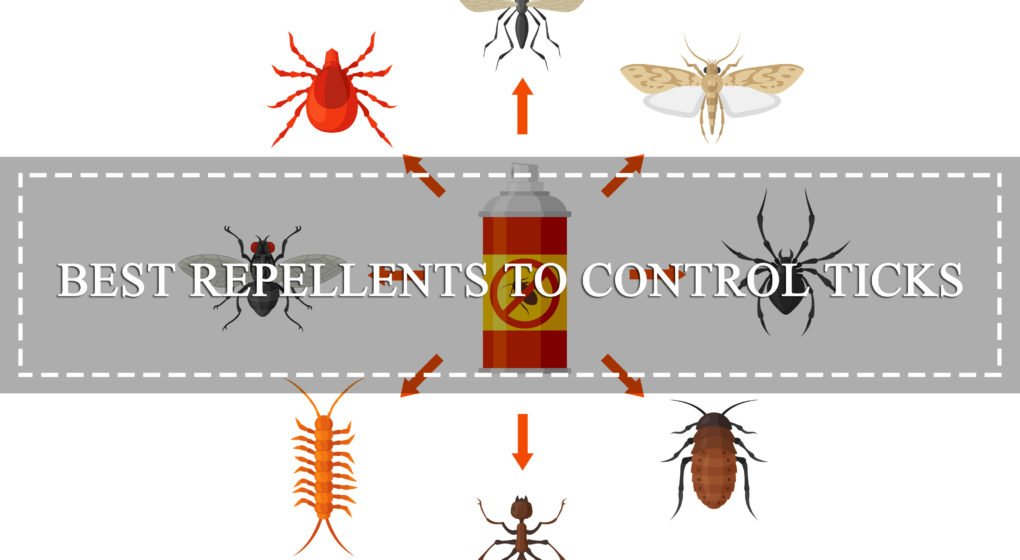 Best Repellents to Get Rid of The Blacklegged Ticks