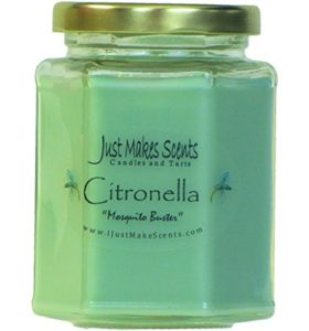 Citronella Soy Candle