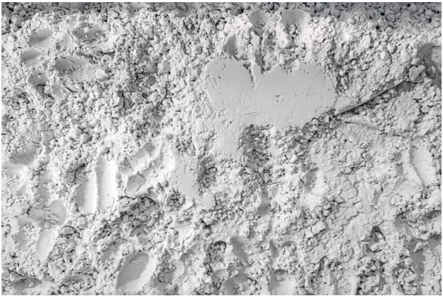 the texture of diatomaceous earth