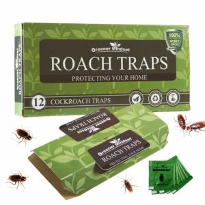 Greener Mindset 12 Pack Roach Trap