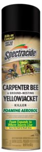 Spectracide Carpenter Bee Spray