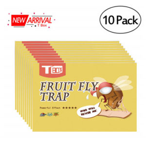 T Box Fruit Fly Trap,Gnat Trap Indoor