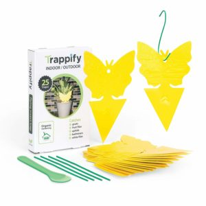 Trappify Sticky Trap Review
